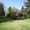 The Backyard - May 27