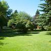 The Backyard - July 8