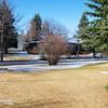 The Backyard - April 27