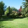 The Backyard - June 4