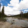 The Campsite Stream
