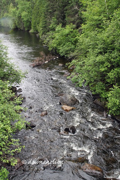 Stream from other side of the bridge.  7/12/2017