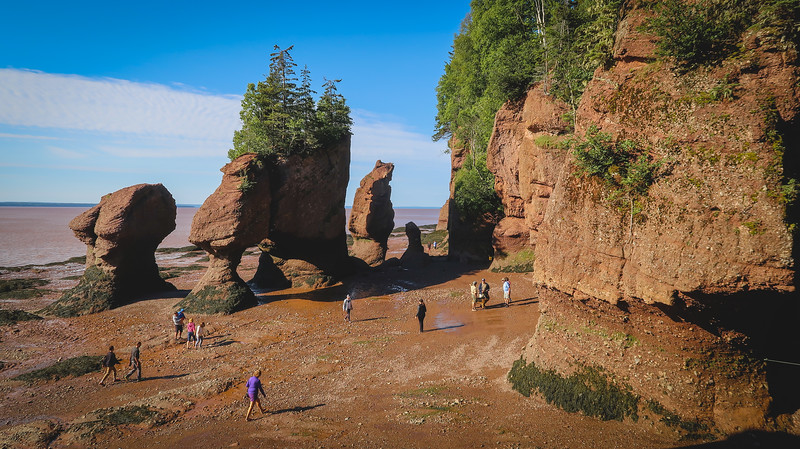 Views of the Hopewell Rocks at low tide
