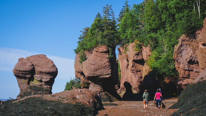 Hiking around the Flower Pots during low tide at the Hopewell Rocks