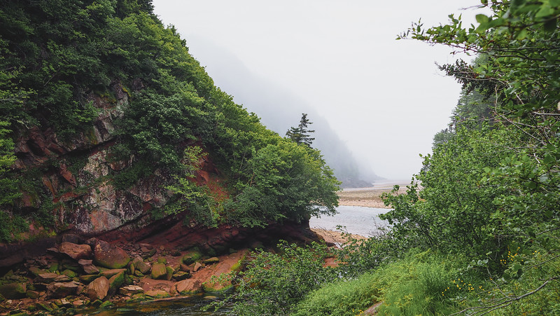 Hiking in Fundy National Park during our New Brunswick road trip
