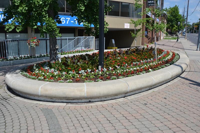 Toronto - Canada 150 Flowers