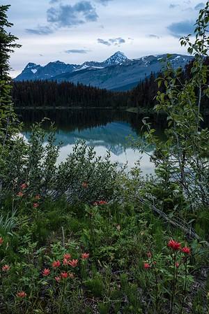 Leach Lake Reflections
