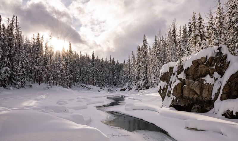 Snow Globe Vibes