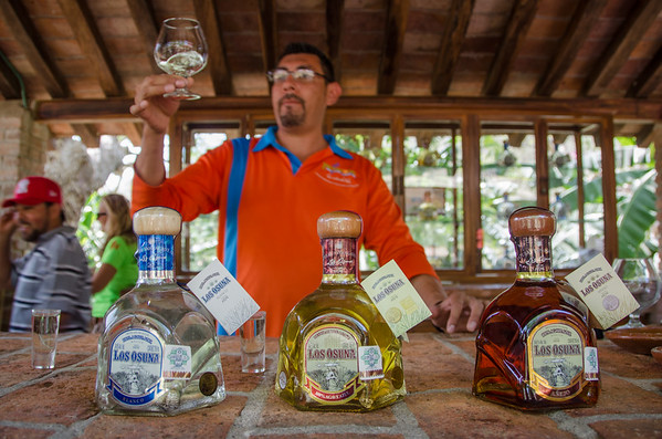 Tequila tasting at Los Osuna Distillery near Mazatlan, Mexico