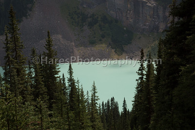 Banff - Lake Louise NP-7173