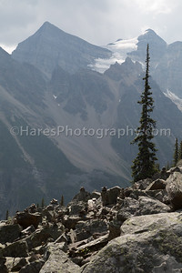 Banff - Lake Louise NP-7155
