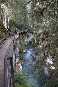 Banff - Lake Louise-8840