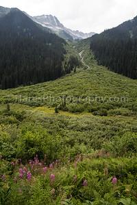 Glacier Canada NP-5149