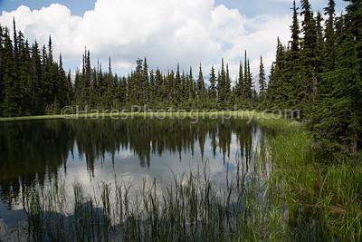 Glacier NP - Canada-5349