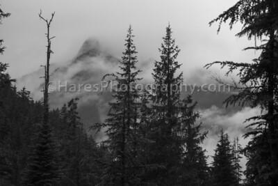 Glacier NP - Canada-5460