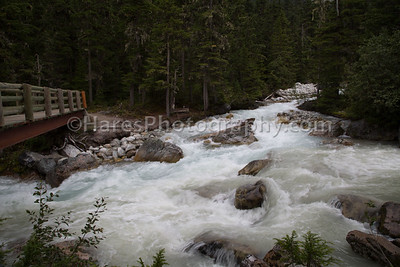 Glacier NP - Canada-5444