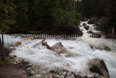 Glacier NP - Canada-5417