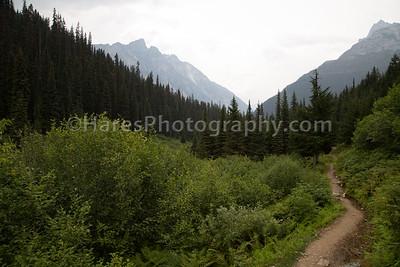 Glacier Canada NP-5097