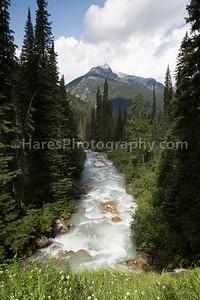 Glacier Canada NP-5224