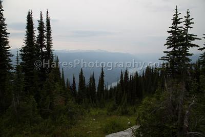 Mt Revelstoke NP-4890