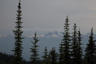 Mt Revelstoke NP-4913