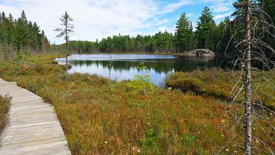 Mizzy Lake Trail, Algonguin Park