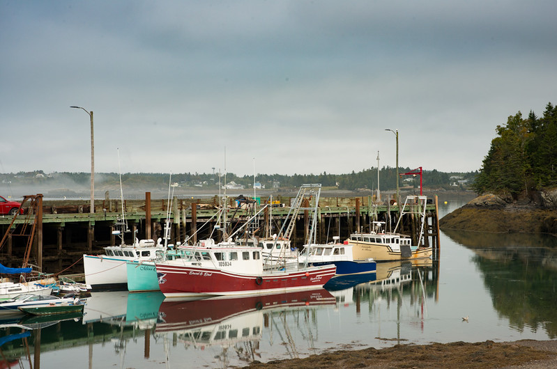 Campobello Harbor
