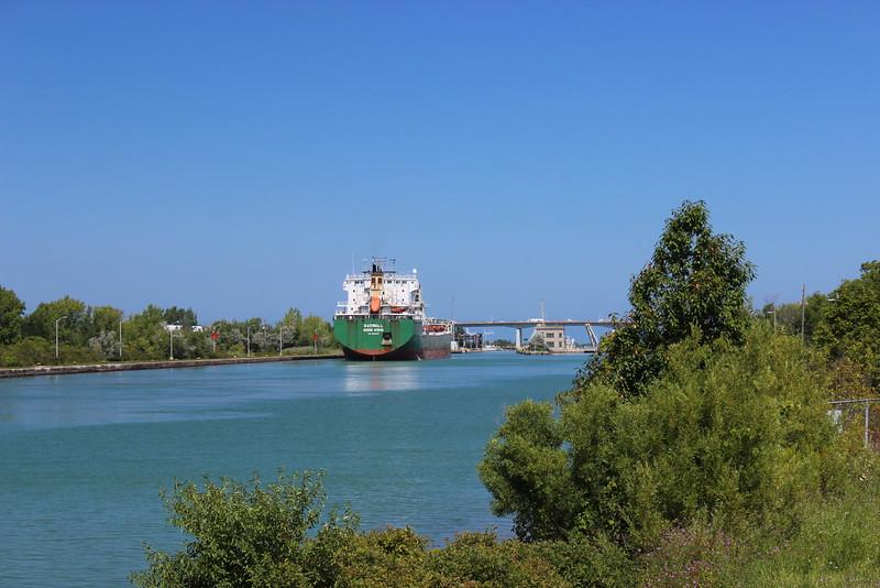 Gadwall Ship