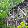 WA 016<br /> <br /> A 1916 train trestle in Whatcom Falls Park, Bellingham, Washington.