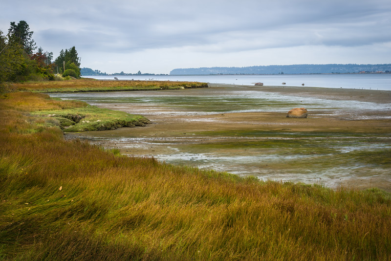 WA 012<br /> <br /> Low tide at Drayton Harbor near Blaine, Washington.
