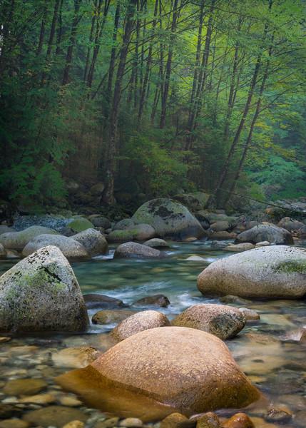 CA 017<br /> <br /> Lynn Creek flows through Lynn Canyon at Lynn Headwaters Regional Park in North Vancouver, B.C.
