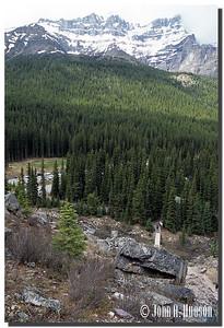 1860_03-1-0131-NCS-Alberta