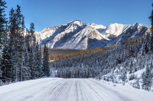 Road in the Canadian Rockies