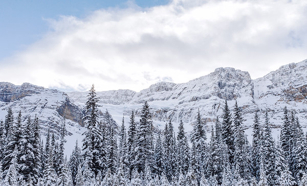 Wintry landscape along the Icefields Parkway in Alberta, Canada.