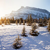 Morning sun in Banff National Park
