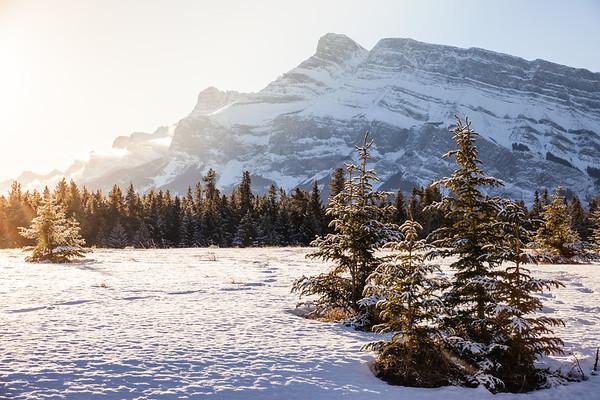 Morning sun in Banff National Park, Alberta, Canada