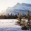 Morning sun in Banff National Park, Alberta, Canada