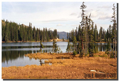 1555_1989011-R1-C1-NCS-Alberta