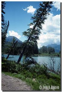 1882_AB-1-0037-NCS-Alberta