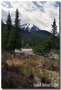 1544_1986013-R7-C4-NCS-Alberta