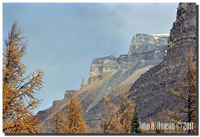 1499_1984019-R3-C1-NCS-Alberta
