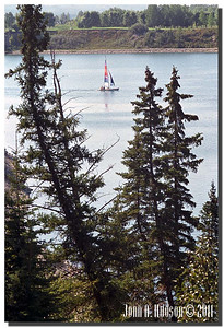 1528_1985018-R4-C1-NCS-Alberta