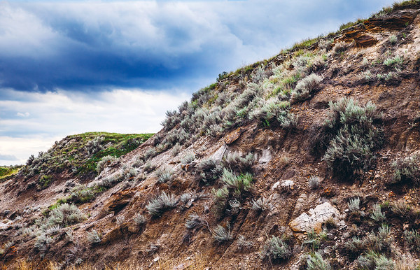Canadian Badlands in Alberta, Canada