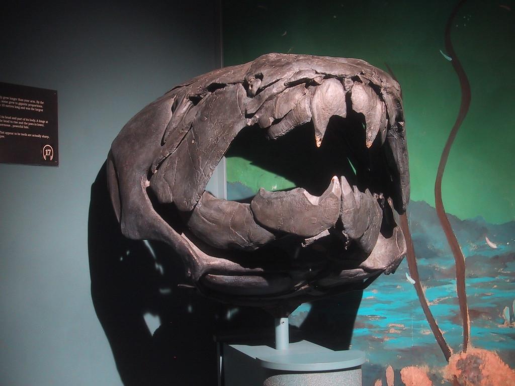 Prehistoric Monster - Royal Tyrrell Museum of Paleontology - Drumheller, Alberta Canada
