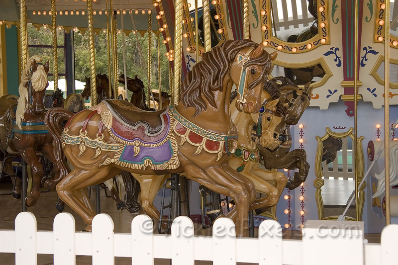 1920's Carousal Hand carved and painted.