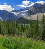 Icefields Parkway Lake Louise Alberta Canada Panoramic Landscape Fine Art Prints For Sale Forest - 016869 - 18-08-2015 - 7719x8458 Pixel