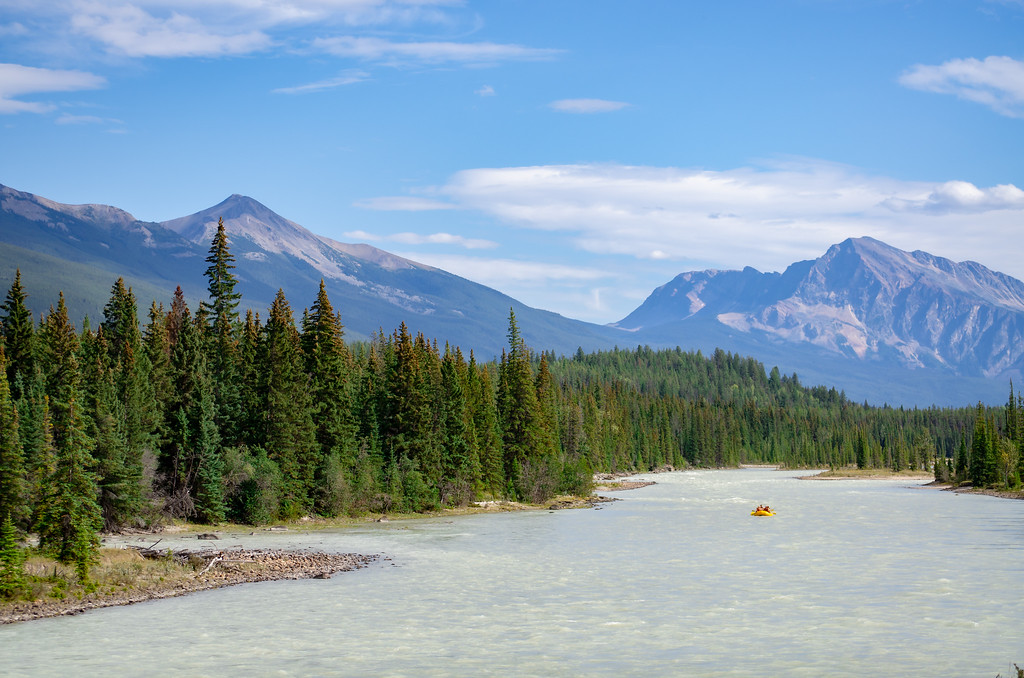 Athabasca River in Jasper National Park, Alberta