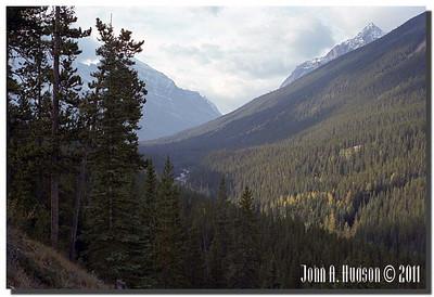 1485_1983008-R6-C1-NCS-Alberta