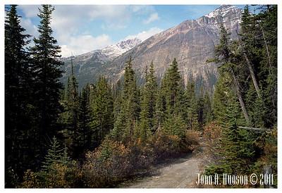 1487_1983009-R1-C2-NCS-Alberta