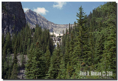 1463_1981005-R4-C4-NCS-Alberta.jpg : Below Lake Agnes [which is above Lake Louise] and its waterfall, with the Big Beehive to the left and the Teahouse showing through the trees
